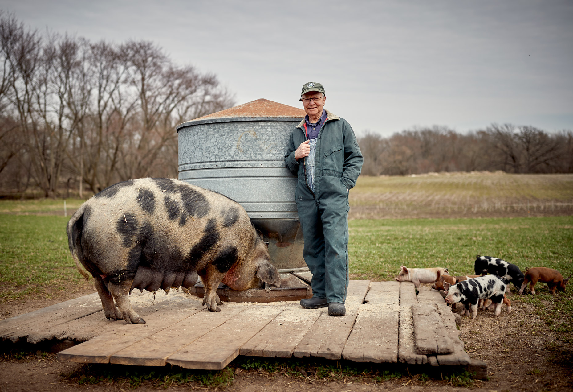 Paul Willis  Niman Ranch with hogs | Saverio Truglia